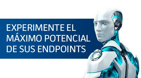 maximo-potencial-endpoint